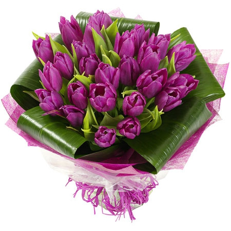 http://sakhrose.ru/wp-content/uploads/2014/05/tulips17.jpg